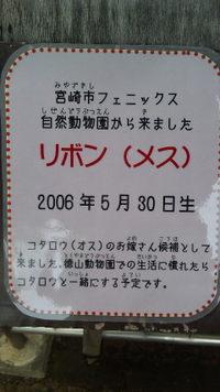 Dvc00456
